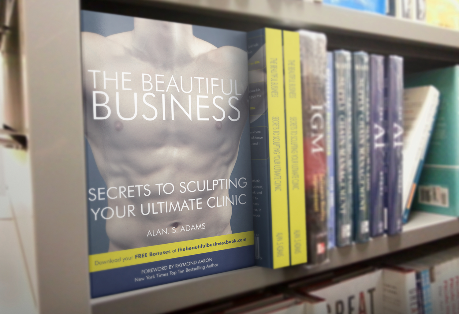 "Alan's Amazon best seller ""The Beautiful Business"""